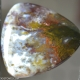 Smugglers Agate Lexx Stones